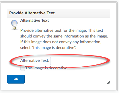 Alternative Text box with the alternative text field circled