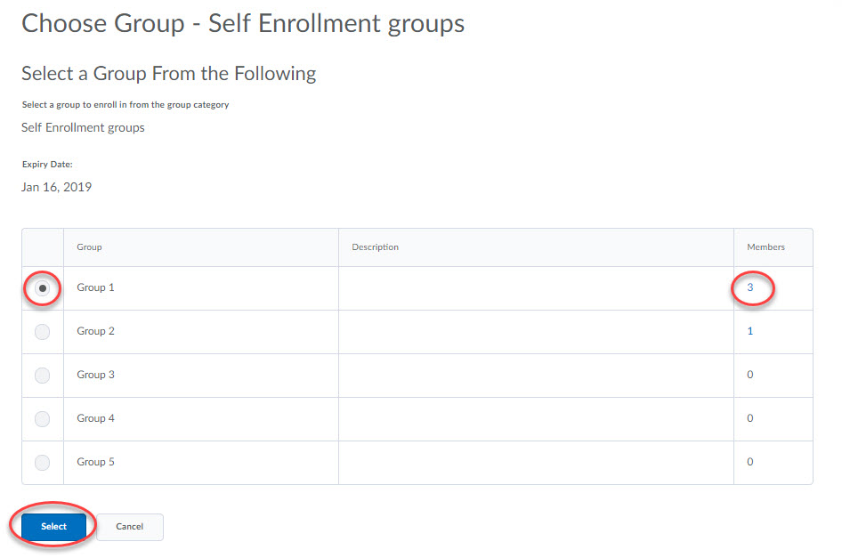Screenshot of student view of My Groups.
