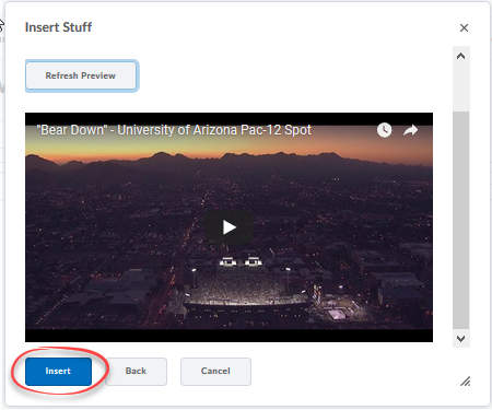 Screenshot of a preview of the embedded video with the Insert button circled
