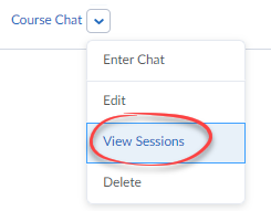 Screenshot of the options dropdown with View Sessions circled.