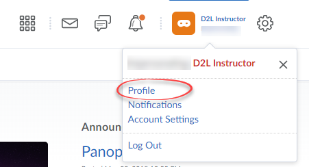 Screenshot of User Settings with Profile circled.
