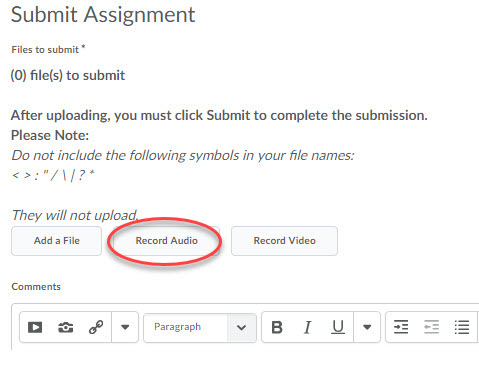 Assignment Audio button