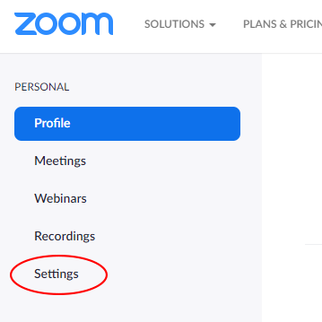 Zoom Settings link