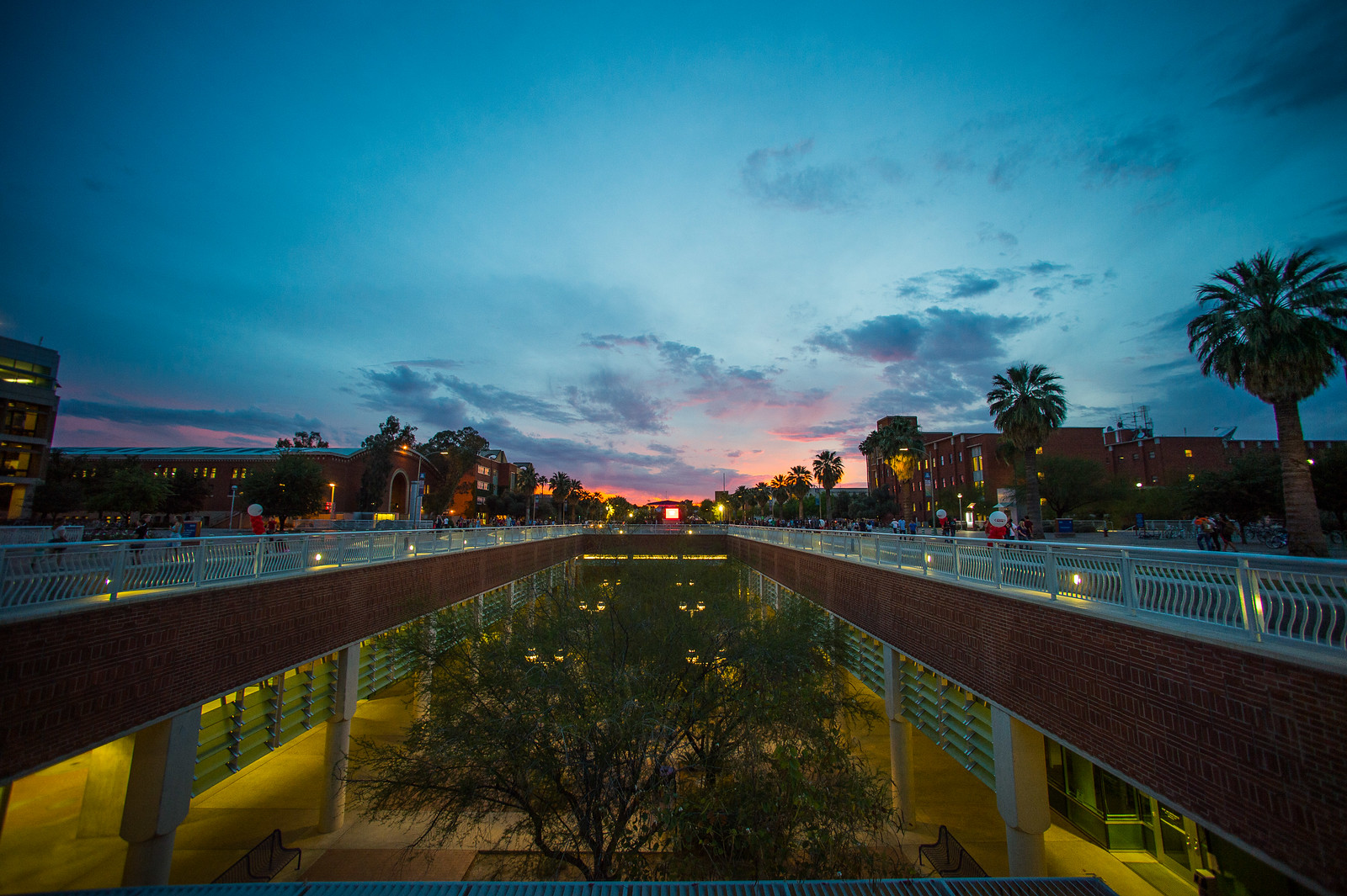Photo of the Integrated Learning Center on the Unviersity of Arizona campus at dusk