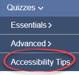 accessibility tips circled in help menu