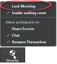 Lock Meeting option circled in red.